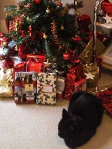 My black cat, Mia, sitting by the Christmas presents