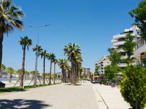 The promenade in Vlore.  This is a wide promenade with a long rows of palm trees.  One the right are flats with balconies overlooking it