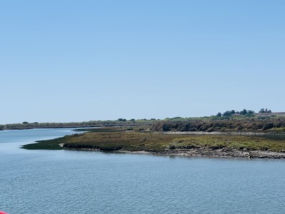 Part of Tavira's Ria Formosa natural park