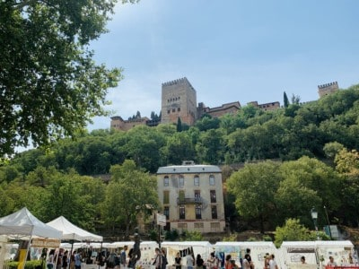 View of the Alhambra from the market at the Paseo de Los Tristes.  The picture shows market stalls and then a hill with vegetation and the Alhambra above