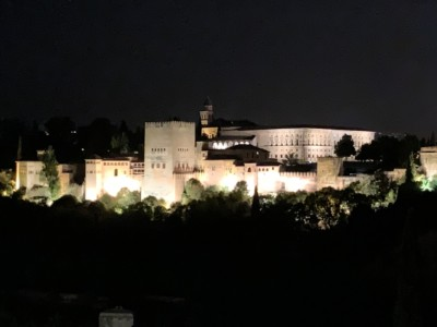 Picture of the Alhambra lit up at night on the hill
