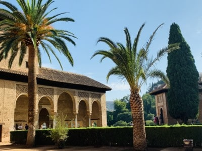 An outdoor area that you can wander in when visiting the Alhambra.  This has a small Moorish building with arches and palm trees outside