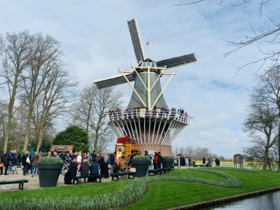 The Keukenhof windmill - this sits by the river and has a platform halfway up where people are looking down from