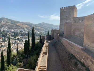 Views from the Alcazaba out across the hills of Granada - you can see vegetation on the hill the Alcazaba sits on and the tower