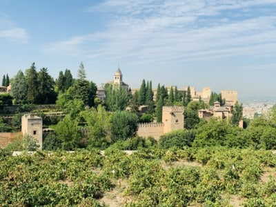 View of the Alhambra palace and Alcazaba from the Generalife.  You can see the vegetation surrounding the buildings
