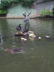 Ducks and duckling swimming around a statue on Swan Lake