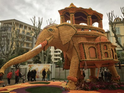 A large elephant made of citrus fruit.  It is standing to the left with it's trunk swinging out