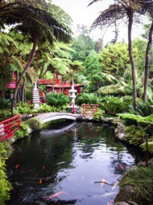 A stream with koi carp in the garden - you can see a small white bridge over the water, red Japanese structures and tropical plants