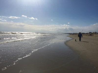A view of the beach in Rimini - you can see a person walking their dog