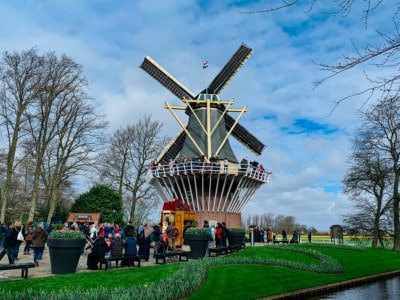 The windmill at Keukenhof.  This is besides the canal and you can see people halfway up on a platform overlooking the gardens