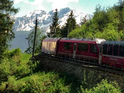 A photo of the Bernna Express train riding through alpine trees with the mountains in the background