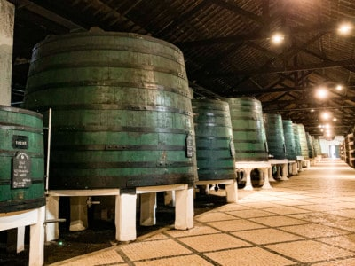 An image of large green barrelsthat the port is stored in in the cellars