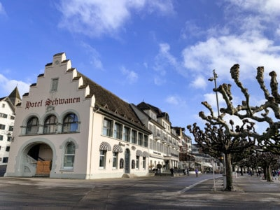 One the ornate buildings along the promenade on the lakeside in Rapperswil.  You can see bare trees to the side.