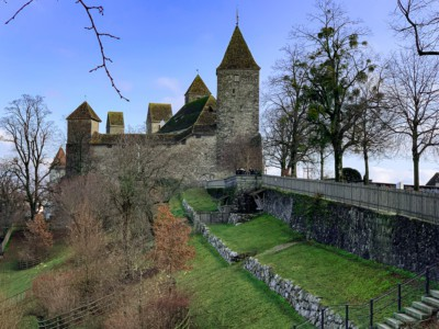 An image of Rapperswil castle that you can see on a day trip from Zurich.  It sits on a grassy slope with trees to the side.