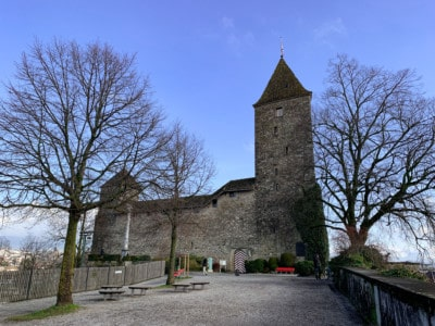 An image of Rapperswil castle with the bare winter trees on either side.  There is a stone pathway leading up to it.
