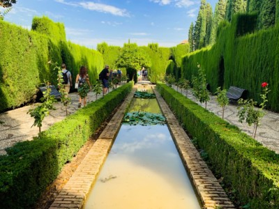 Part of the garden in the Generalife in Spain's Alhambra.  You can see a thin channel of water surrounded by neat and manicured hedges.