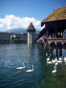 The Chapel Bridge in Lucerne. This is a side view and there are swans swimming by the side of it.