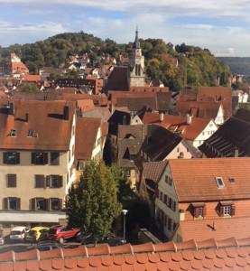 A view over Tubingen over the rooftops from the castle
