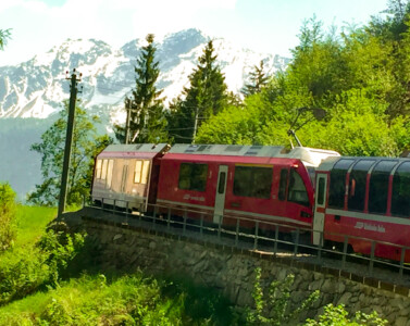 The Bernina Express red train.  This is moving through alpine forest and there are mountains in the background